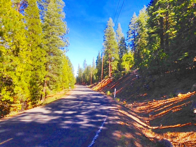 Owner financed land for sale in northern California, close to Oregon.