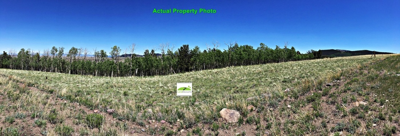 Vacant Land in Park County, CO with amazing view.